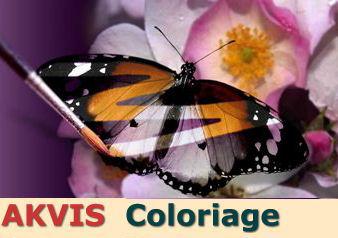 Aktvis Coloriage